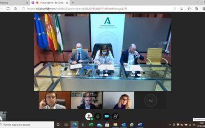 AAEECO se reúne con la viceconsejera para solicitar un rescate del servicio de actividades extraescolares